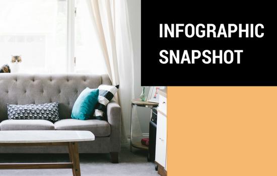Infographic Snapshot: Millennials' Home Décor Shopping