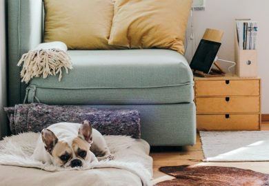 4 Big Brands Joining the Rental Economy